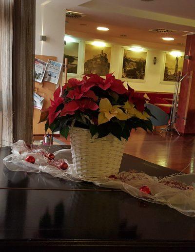 Hotely a restaurace (7)